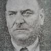 Малин Николов Боснешки